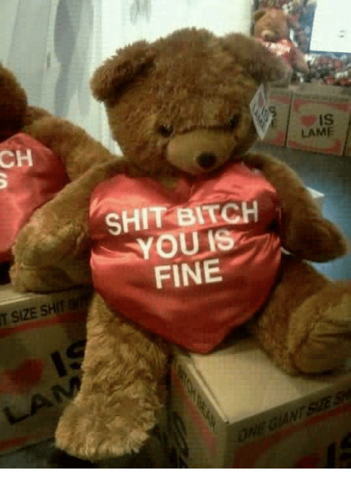 Shit bitch you is