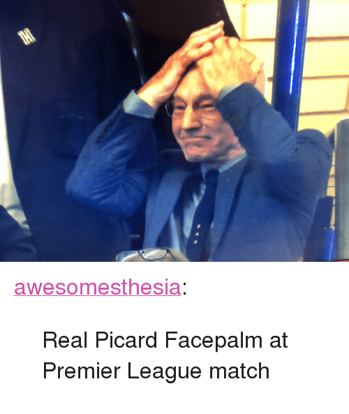 """Facepalm, Premier League, and Tumblr: <p><a href=""""http://awesomesthesia.tumblr.com/post/173746338193/real-picard-facepalm-at-premier-league-match"""" class=""""tumblr_blog"""">awesomesthesia</a>:</p>  <blockquote><p>Real Picard Facepalm at Premier League match</p></blockquote>"""