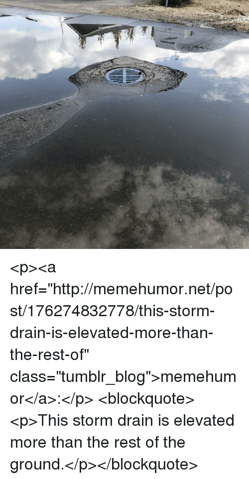 """Elevated: <p><a href=""""http://memehumor.net/post/176274832778/this-storm-drain-is-elevated-more-than-the-rest-of"""" class=""""tumblr_blog"""">memehumor</a>:</p>  <blockquote><p>This storm drain is elevated more than the rest of the ground.</p></blockquote>"""