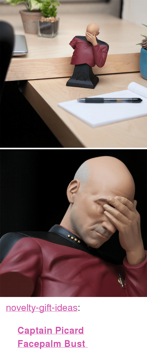 """Facepalm, Tumblr, and Blog: <p><a href=""""https://novelty-gift-ideas.tumblr.com/post/173683563238/captain-picard-facepalm-bust"""" class=""""tumblr_blog"""">novelty-gift-ideas</a>:</p><blockquote><p><b><a href=""""https://awesomage.com/captain-picard-facepalm-bust/"""">  Captain Picard Facepalm Bust   </a></b><br/></p></blockquote>"""