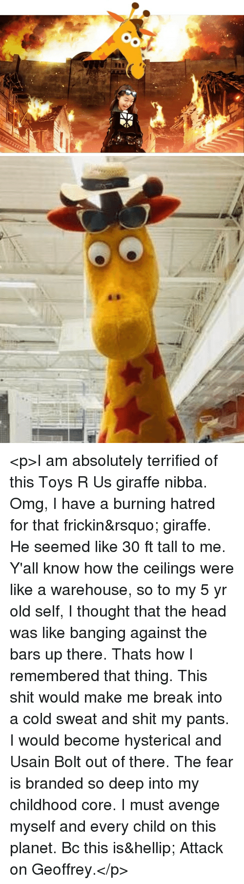 Warehouse: <p>I am absolutely terrified of this Toys R Us giraffe nibba. Omg, I have a burning hatred for that frickin&rsquo; giraffe. He seemed like 30 ft tall to me. Y'all know how the ceilings were like a warehouse, so to my 5 yr old self, I thought that the head was like banging against the bars up there. Thats how I remembered that thing. This shit would make me break into a cold sweat and shit my pants. I would become hysterical and Usain Bolt out of there. The fear is branded so deep into my childhood core. I must avenge myself and every child on this planet. Bc this is&hellip; Attack on Geoffrey.</p>