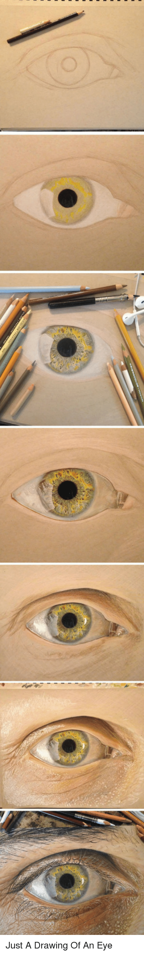 Drawing Of An: <p>Just A Drawing Of An Eye</p>