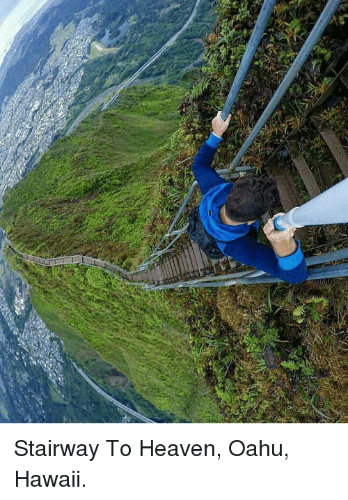 Heaven, Stairway to Heaven, and Hawaii: <p>Stairway To Heaven, Oahu, Hawaii.</p>