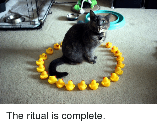 The Ritual: <p>The ritual is complete.</p>