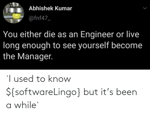 I Used: `I used to know ${softwareLingo} but it's been a while`