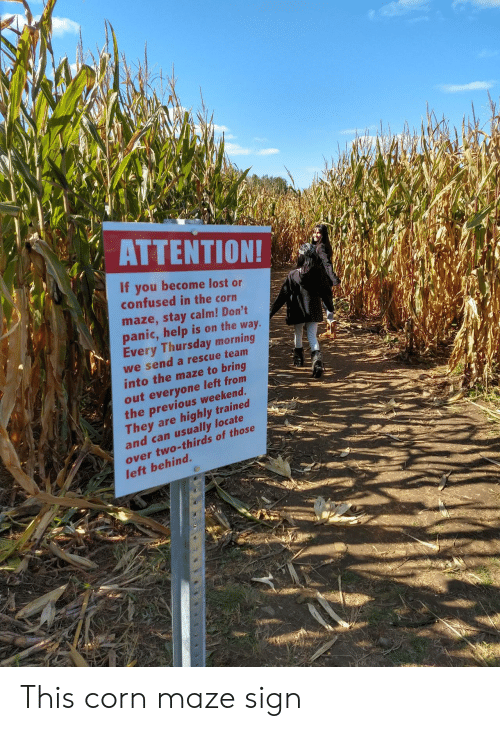 corn: ΑΤΤEΝTIΟΝ!  If you become lost or  confused in the corn  maze,stay calm! Don't  panic,help is on the way.  Every Thursday morning  we send a rescue team  into the maze to bring  out everyone left from  the previous weekend.  They are  and can usually locate  highly trained  over two-thirds of those  left behind. This corn maze sign