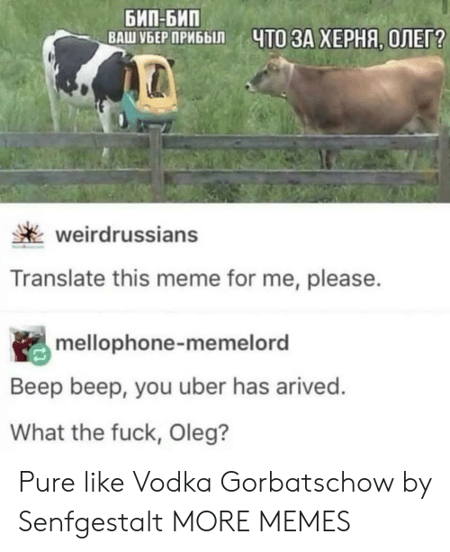 Me Please: БИП-БИП  ВАШ УБЕР ПРИБЫЛ  ЧТО ЗА ХЕРНЯ, ОЛЕГ?  weirdrussians  Translate this meme for me, please.  mellophone-memelord  Beep beep, you uber has arived.  What the fuck, Oleg? Pure like Vodka Gorbatschow by Senfgestalt MORE MEMES