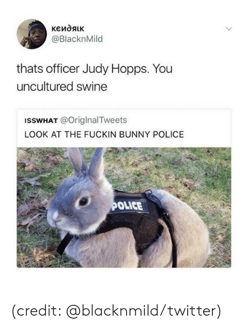 Dank, Police, and Twitter: кеидяк  @BlacknMild  thats officer Judy Hopps. You  uncultured swine  ISSWHAT @OriglnalTweets  LOOK AT THE FUCKIN BUNNY POLICE  POLICE (credit: @blacknmild/twitter)
