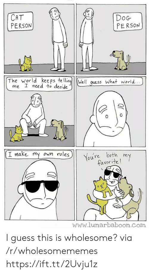 Wholesome: СAT  PERSON  DoG  PERSON  The world kee ps te lling  me I need to decide  Well  what world...  guess  I make my own rules  You're both  favor ite!  my  www.lunarbaboon.com I guess this is wholesome? via /r/wholesomememes https://ift.tt/2Uvju1z