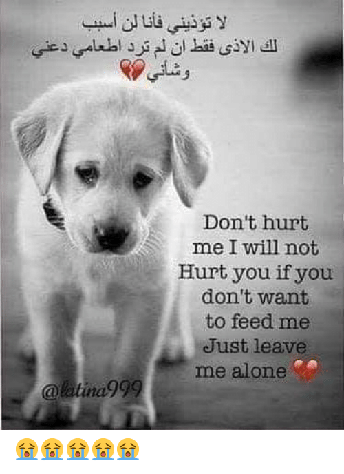 Being Alone, Will, and Feed Me: لا تؤذيني فأنا لن أسب ب  الك الأذي فقط ان لم ترد اطعامي دعني  وشاني  Don't hurt  me I will not  Hurt you if you  don't want  to feed me  Just leave  me alone  @latina999 😭😭😭😭😭