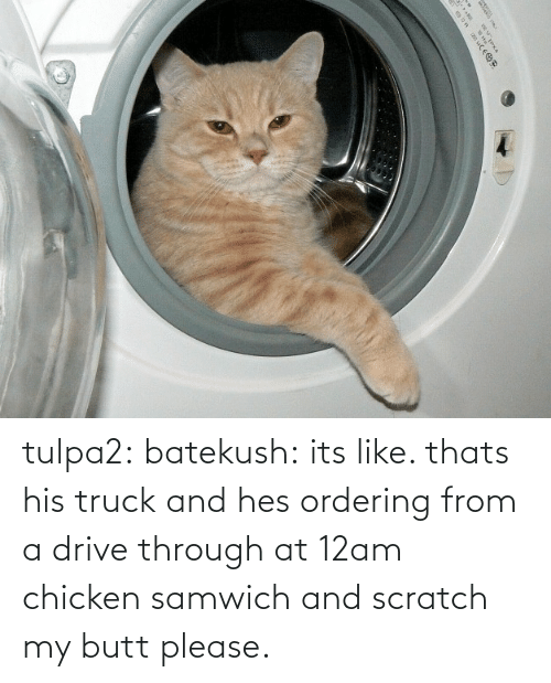 Scratch: |५ tulpa2: batekush: its like. thats his truck and hes ordering from a drive through at 12am chicken samwich and scratch my butt please.