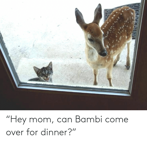 "Mom: ""Hey mom, can Bambi come over for dinner?"""