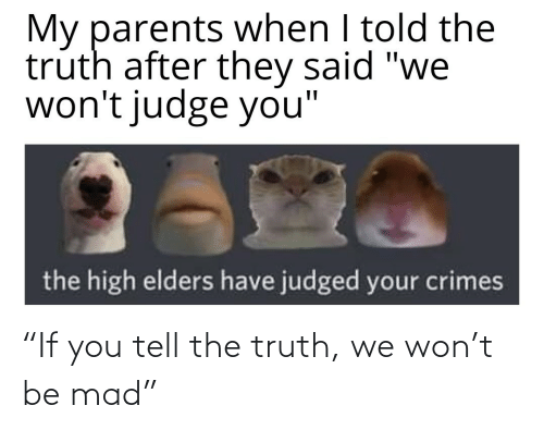 "the truth: ""If you tell the truth, we won't be mad"""