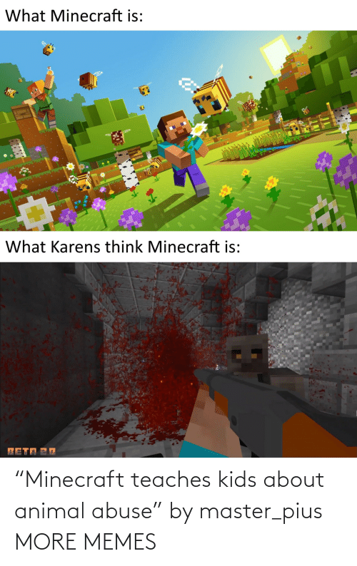 "Animal: ""Minecraft teaches kids about animal abuse"" by master_pius MORE MEMES"