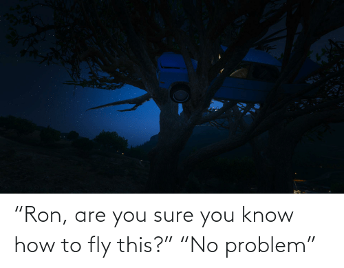 """fly: """"Ron, are you sure you know how to fly this?"""" """"No problem"""""""
