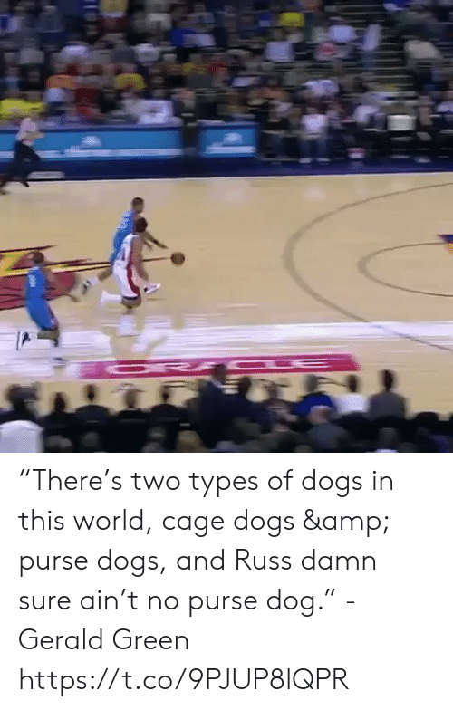"Types Of: ""There's two types of dogs in this world, cage dogs & purse dogs, and Russ damn sure ain't no purse dog."" - Gerald Green  https://t.co/9PJUP8lQPR"