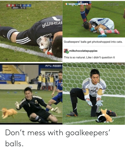 photoshopped: ワールトドカップ  -3-0-1  645:25  FIFA 7-JUDE  E韓国 1-2日本  5:12  1U- 1 C LIVE  Goalkeepers' balls get photoshopped into cats.  milkchocolatepuppies  This is so natural. Like i didn't question it  ARCASIAN  PREAM Don't mess with goalkeepers' balls.