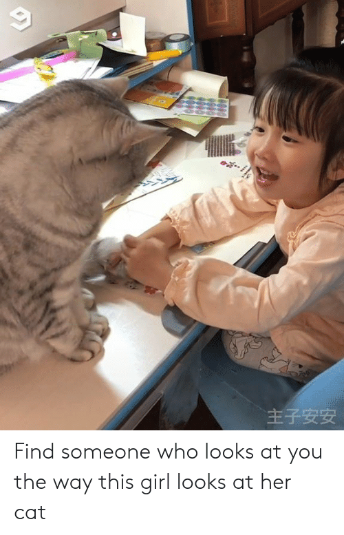 Dank, Girl, and 🤖: 主子安安 Find someone who looks at you the way this girl looks at her cat