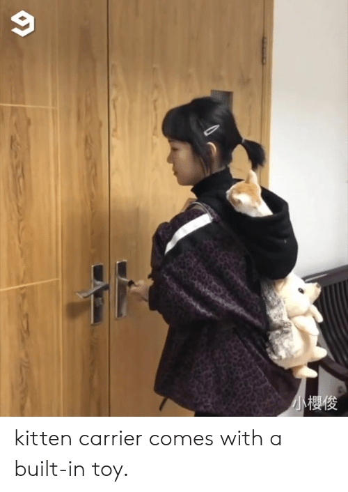 Dank, 🤖, and Carrier: 小櫻俊 kitten carrier comes with a built-in toy.