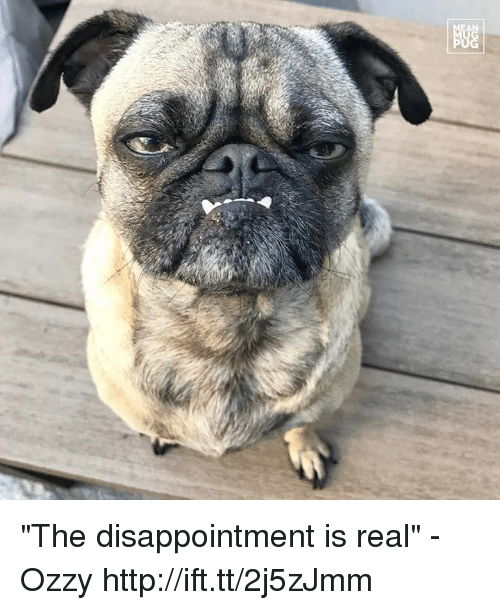 "Ozzies: 显 ""The disappointment is real"" -Ozzy http://ift.tt/2j5zJmm"
