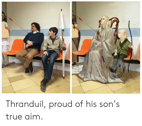 aim: @盖长生 Thranduil, proud of his son's true aim.