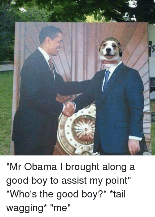 "tail wagging: 藄  岠ー广  舁 ""Mr Obama I brought along a good boy to assist my point"" ""Who's the good boy?"" *tail wagging* ""me"""