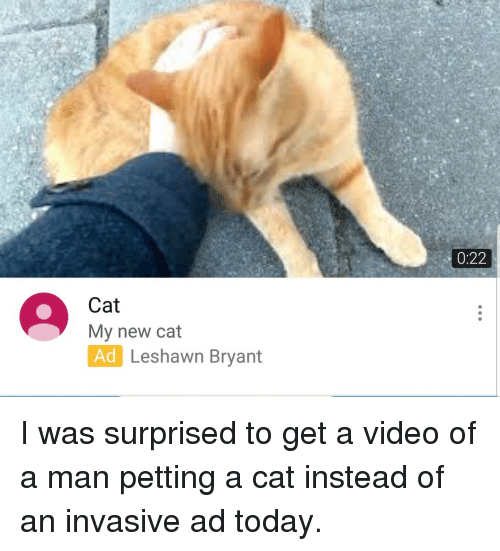 Today, Video, and Cat: 0:22  Cat  My new cat  Ad Leshawn Bryant  Leshawn Bryant I was surprised to get a video of a man petting a cat instead of an invasive ad today.