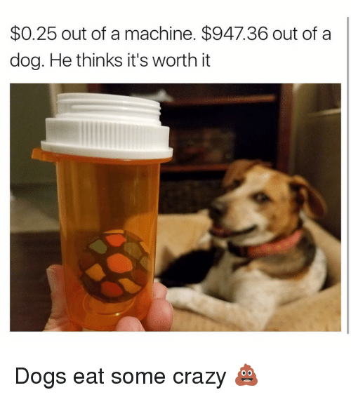Machining: $0.25 out of a machine. $947.36 out of a  dog. He thinks it's worth it Dogs eat some crazy 💩