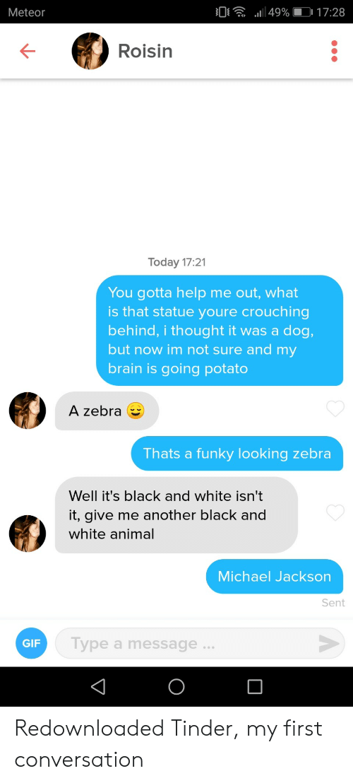 Gif, Michael Jackson, and Tinder: 0 49%017:28  Meteor  Roisin  Today 17:21  You gotta help me out, what  is that statue youre crouching  behind, i thought it was a dog,  but now im not sure and my  brain is going potato  A zebra  Thats a funky looking zebra  Well it's black and white isn't  it, give me another black and  white animal  Michael Jackson  Sent  Type a message..  GIF Redownloaded Tinder, my first conversation