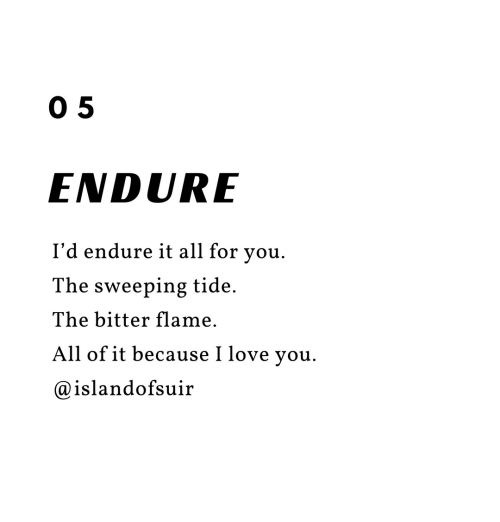 Love, I Love You, and Flame: 0 5  ENDURE  I'd endure it all for you.  The sweeping tide.  The bitter flame.  All of it because I love you.  @islandofsuir
