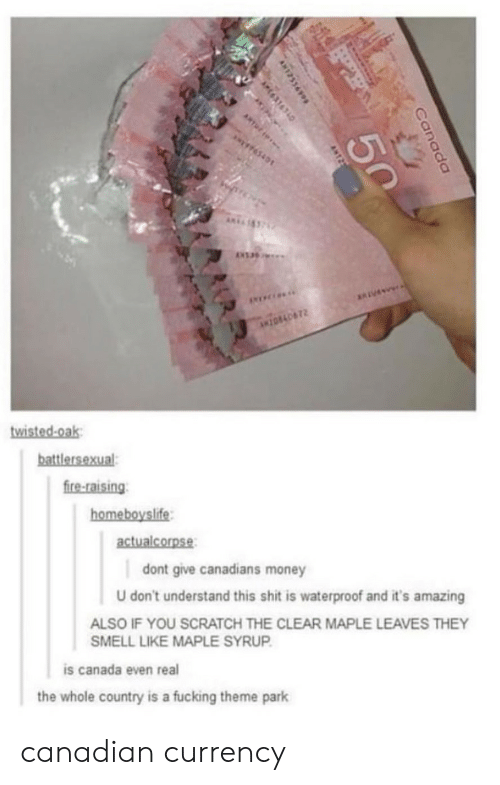 theme park: 0  fire-raising  homeboyslife  actualcorpse  dont give canadians money  U don't understand this shit is waterproof and it's amazing  ALSO IF YOU SCRATCH THE CLEAR MAPLE LEAVES THEY  SMELL LIKE MAPLE SYRUP  is canada even real  the whole country is a fucking theme park canadian currency
