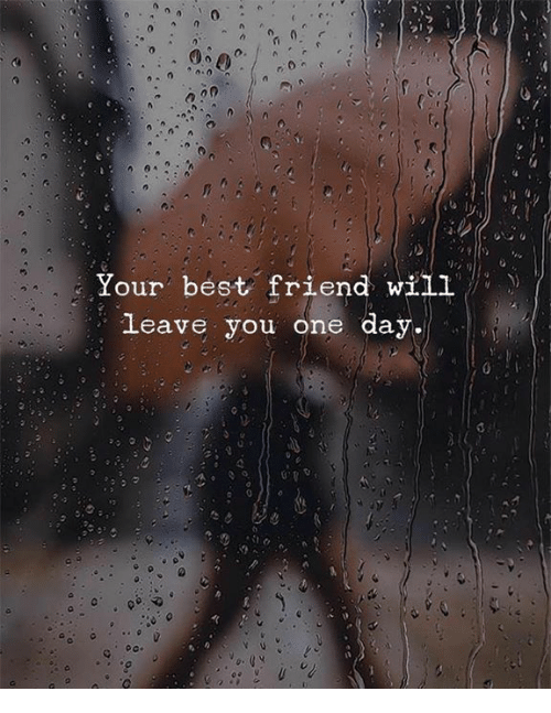 Best Friend, Best, and One: 0  Your best friend will  leave you one day.