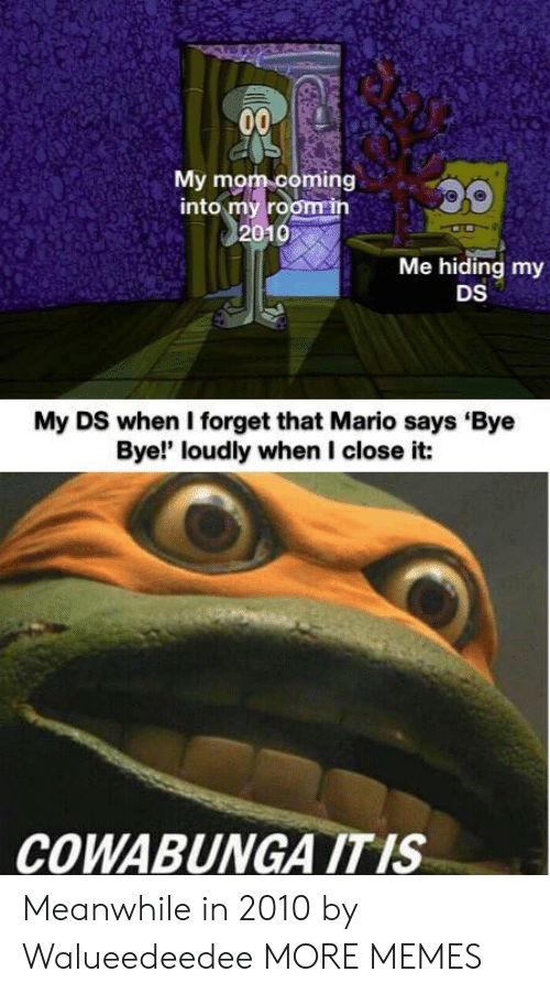 bye bye: 00  My mom coming  into my room in  2010  Me hiding my  DS  My DS when I forget that Mario says Bye  Bye!' loudly when I close it:  COWABUNGA ITIS Meanwhile in 2010 by Walueedeedee MORE MEMES