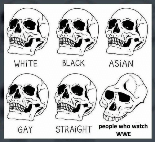 asian gay: 010  WHiTE  BLACK  ASiAN  GAY  people who watch  WWE