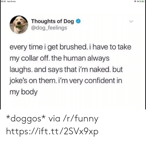 Im Naked: 08:25 tors 8 nov.  44 % ED  Thoughts of Dog  @dog_feelings  every time i get brushed. i have to take  my collar off. the human always  laughs. and says that i'm naked. but  joke's on them. i'm very confident in  my body *doggos* via /r/funny https://ift.tt/2SVx9xp