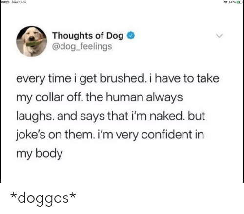 Im Naked: 08:25 tors 8 nov.  44 % ED  Thoughts of Dog  @dog_feelings  every time i get brushed. i have to take  my collar off. the human always  laughs. and says that i'm naked. but  joke's on them. i'm very confident in  my body *doggos*