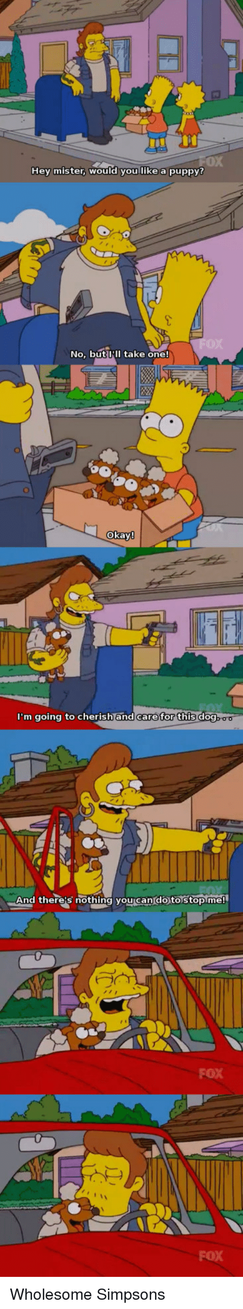 hey mister: 0X  Hey mister, WOuld you like a puppy?  No, but III take one!  okay  m going to cherish and care for this do  And there's nothing you can'do to stopme!  FOX  FOX <p>Wholesome Simpsons</p>