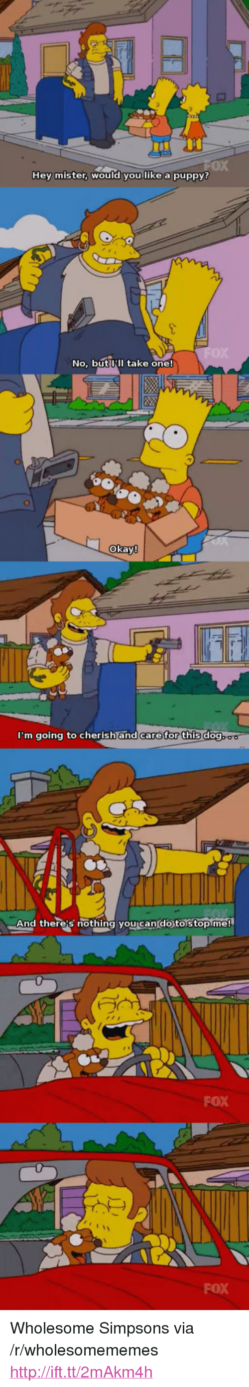 "hey mister: 0X  Hey mister, WOuld you like a puppy?  No, but III take one!  okay  m going to cherish and care for this do  And there's nothing you can'do to stopme!  FOX  FOX <p>Wholesome Simpsons via /r/wholesomememes <a href=""http://ift.tt/2mAkm4h"">http://ift.tt/2mAkm4h</a></p>"
