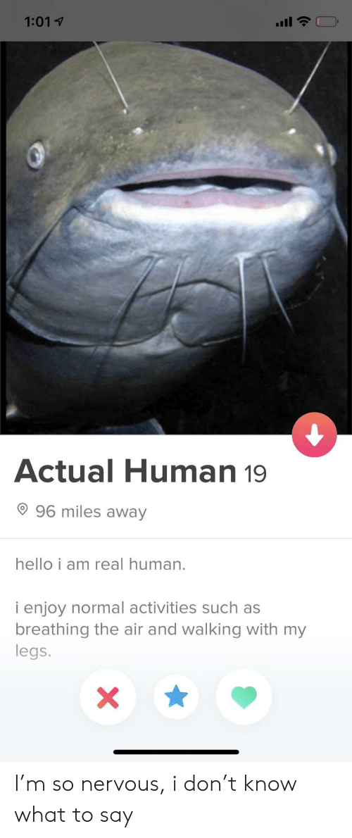 Hello, Human, and Air: 1:01 1  Actual Human 19  96 miles away  hello i am real human  i enjoy normal activities such as  breathing the air and walking with my  legs. I'm so nervous, i don't know what to say