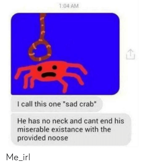 """No Neck: 1:04 AM  I call this one """"sad crab""""  He has no neck and cant end his  miserable existance with the  provided noose Me_irl"""