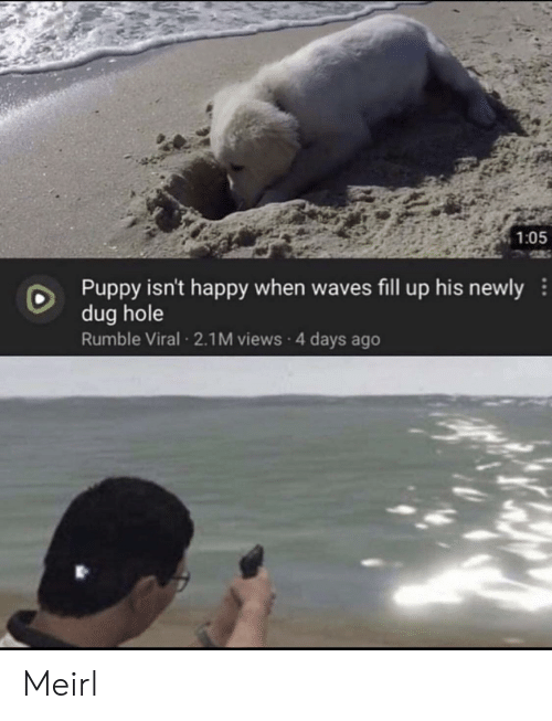 Puppy: 1:05  Puppy isn't happy when waves fill up his newly  dug hole  Rumble Viral 2.1M views 4 days ago Meirl
