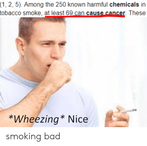wheezing: (1, 2, 5). Among the 250 known harmful chemicals in  tobacco smoke, at least 69 can cause cancer. These  *Wheezing* Nice smoking bad