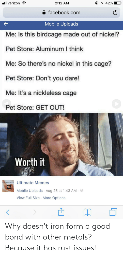 Ultimate Memes: 1 42%  l Verizon  2:12 AM  facebook.com  Mobile Uploads  Me: Is this birdcage made out of nickel?  Pet Store: Aluminum I think  Me: So there's no nickel in this cage?  Pet Store: Don't you dare!  Me: It's a nickleless cage  Pet Store: GET OUT!  Worth it  Ultimate Memes  hat the cinnamon toast fuck  Mobile Uploads Aug 25 at 1:43 AM  View Full Size More Options Why doesn't iron form a good bond with other metals? Because it has rust issues!