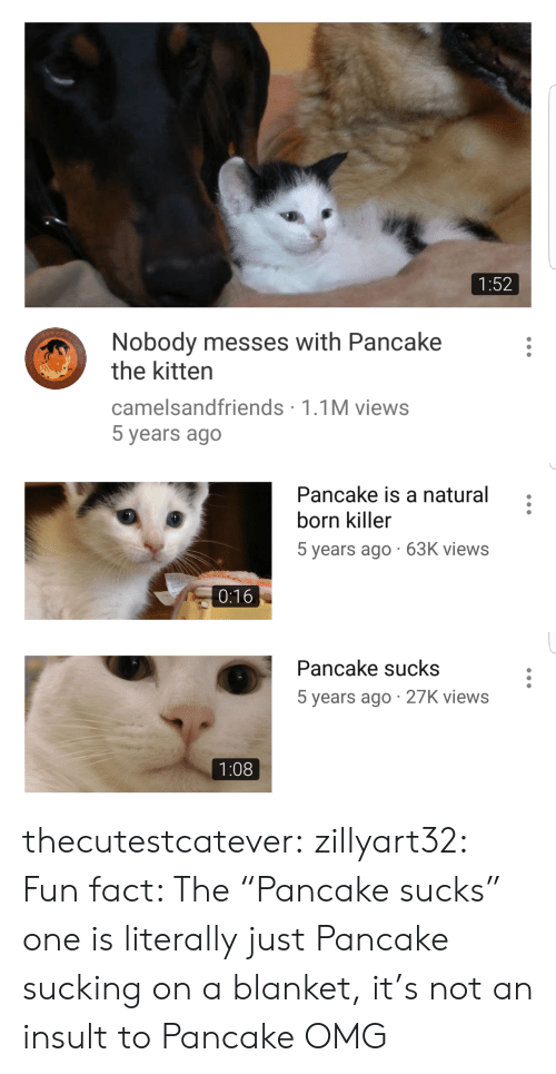 "Omg, Target, and Tumblr: 1:52  Nobody messes with Pancake  the kitten  camelsandfriends 1.1M views  5 years ago   Pancake is a natural  born killer  5 years ago 63K views  0:16   Pancake sucks  5 years ago 27K views  1:08 thecutestcatever:  zillyart32:  Fun fact: The ""Pancake sucks"" one is literally just Pancake sucking on a blanket, it's not an insult to Pancake  OMG"