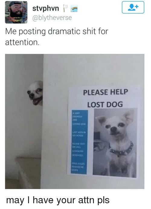 ogs: 1  @blytheverse  a dad on the i  Me posting dramatic shit for  attention.  PLEASE HELP  LOST DOG  A VERY  FRIENDLY  AND  LOVING DOG  LAST SEEN IN  Y HOUSE  PLEASE TEXT  OR CALL  123456785  87654321  OGS RSSEs  REWARD B may I have your attn pls