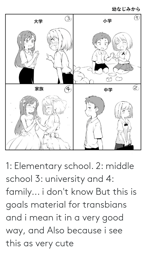 university: 1: Elementary school. 2: middle school 3: university and 4: family... i don't know But this is goals material for transbians and i mean it in a very good way, and Also because i see this as very cute