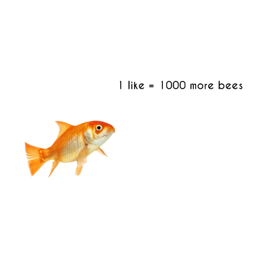 Bees, More, and Like: 1 like- 1000 more bees