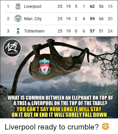 Fall, Football, and Memes: 1  Liverpool  25 19 5 1 62 56 15  ) Man.City  25 19 2 4 59 66 20  3 Tottenham 25 19 0 6 57 51 24  慣  ORGANIZATION  LIVERPOOL  FOOTBALL CLU  EST 1822  WHAT IS COMMON BETWEEN AN ELEPHANT ON TOP OF  A TREE & LIVERPOOL ON THE TOP OF THE TABLE?  YOU CAN'TSAY HOW WILLSTAY  ONIT BUT IN END IT WILL SURELY FALL DOWN  LONG IT Liverpool ready to crumble? 😳