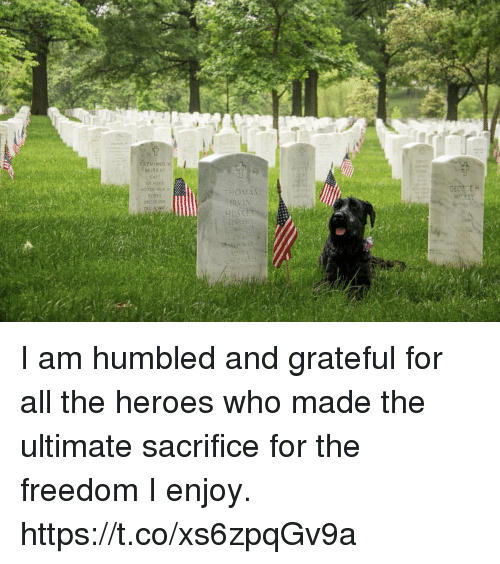 Memes, Heroes, and Freedom: 1  MURRAY I am humbled and grateful for all the heroes who made the ultimate sacrifice for the freedom I enjoy. https://t.co/xs6zpqGv9a
