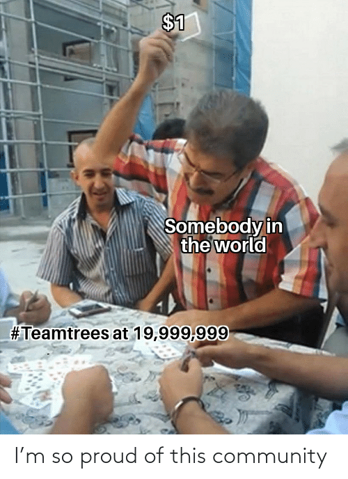 in the world: $1  Somebody in  the world  #Teamtrees at 19,999,999 I'm so proud of this community